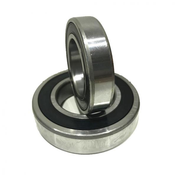 45 mm x 75 mm x 40 mm  FBJ SL04-5009NR cylindrical roller bearings #1 image